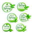 green floral icons for hello spring design vector image