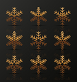 Set of golden snowflakes vector image