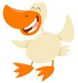 duck farm animal character vector image
