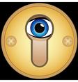 Eye in golden keyhole vector image