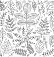 Set of outline leaves vector image