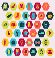Shopping and Fashion related icons vector image