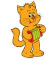 cat musician vector image