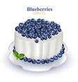 blueberries cake realistic on vector image