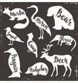 Wild animals isolated silhouettes with lettering vector image
