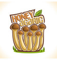 honey agarics mushrooms vector image