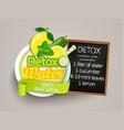 recipe detox cocktail-cucumberlemonwatermint vector image