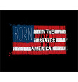 american text flag - born in the usa vector image