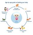 Feeding baby infographics vector image