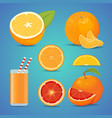 freash orange fruit with green leaves sliced vector image