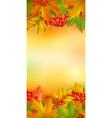 Autumn vertical banner vector image