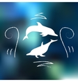 DOLPHIN with doodles vector image