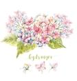 Watercolor hydrangea composition vector image