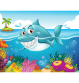 A shark in the sea with corals vector image