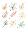 Leaves of trees sketch icons vector image