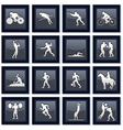 Olympiad Sport Icons vector image