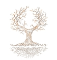 Graphic old branchy tree vector image vector image