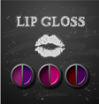 Lipstick lip gloss decorative cosmetics make up vector image
