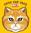 cute cat head vector image