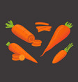 Set carrot vector image