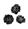 set of three black silhouettes of rose vector image