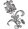 hand drawn floral design element vector image vector image