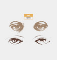 set eyes vector image