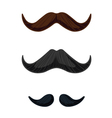 three english style mustaches vector image