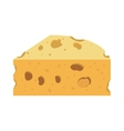 full color with piece of cheese vector image