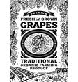 Retro grapes poster black and white vector image