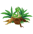 A trunk with a green snake vector image vector image