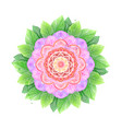 watercolor flower abstract mandala vector image