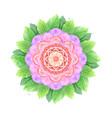 watercolor flower abstract mandala vector image