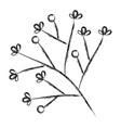 leafy branch natural icon vector image