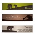 Set of bear banners vector image