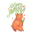 bear mom with her cub vector image