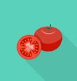 Tomato flat icon vector image