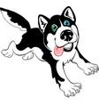 cartoon dog husky vector image