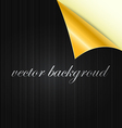 curved background vector image vector image