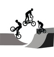 extreme bicyclist - vector image