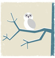 Snowy white owl vector image