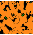 Cats in Different Poses Set vector image vector image