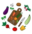 Cooking a vegetable salad colorful sketch vector image