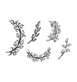 set of hand drawn branches leaves in heart shape vector image