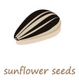 sunflower seeds icon isometric 3d style vector image
