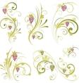 Wine design ornament vector image