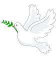 Dove Peace vector image vector image