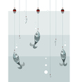 fishes on the hooks vector image