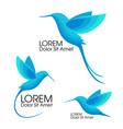 modern set blue birds colibri in flight trendy vector image