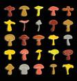 mushrooms set doodle for vector image